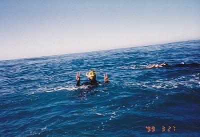 …溺れているのではありません いちおう、イルカと一緒に泳いでいるんです(笑)