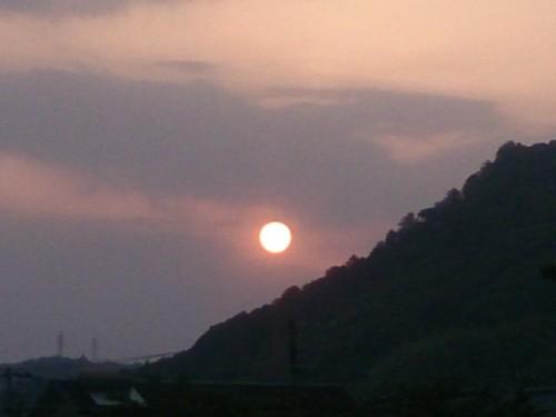 今朝の朝陽