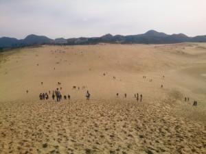 ひさしぶりに鳥取砂丘へ行って来た~坂の高低ものすごくくたびれた