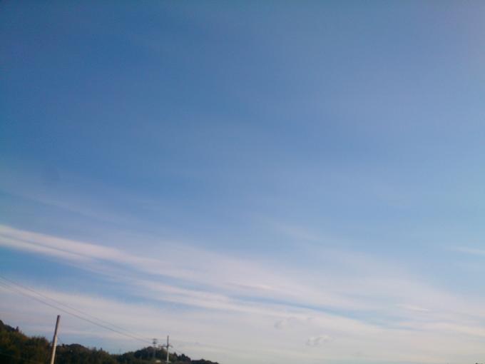 今朝、散歩しながら撮った写真~肉眼と写真になるのはまた違う感じ