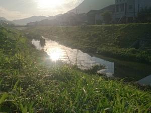 少しずつ陽が長くなってきましたね~夕方も18時ごろでも明るいね