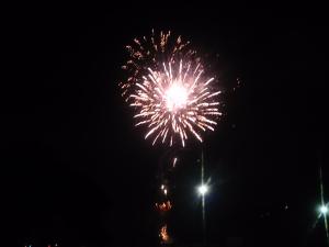 地元高知の花火大会~わが家の今年一発目です