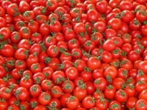 トマトの伝え方一つにしても、いっぱいありますよね