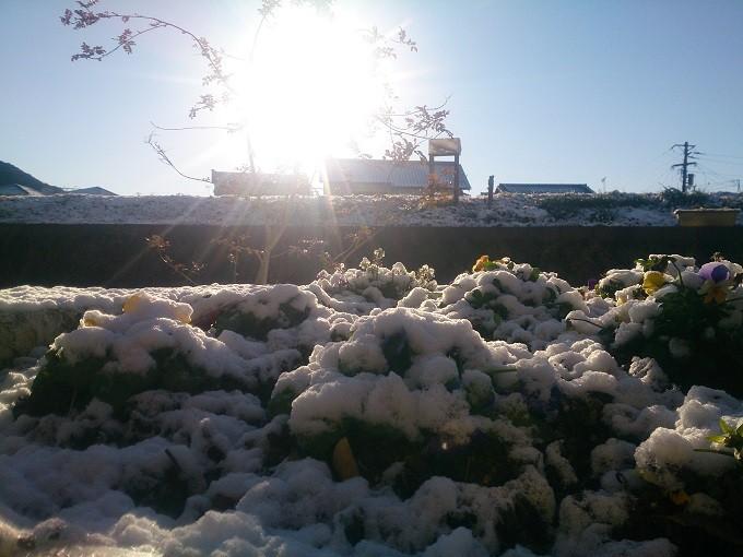 高知県 積雪