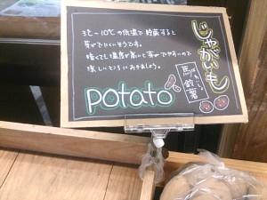 直売所 野菜 手書きPOP1