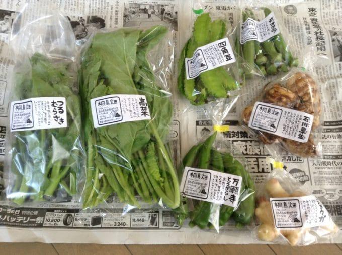 売れる野菜